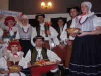 Ples Folklorního sdružení ČR 2011
